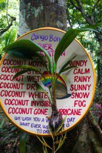 Weather forecast at Congo Bongo EcoVillage Costa Rica